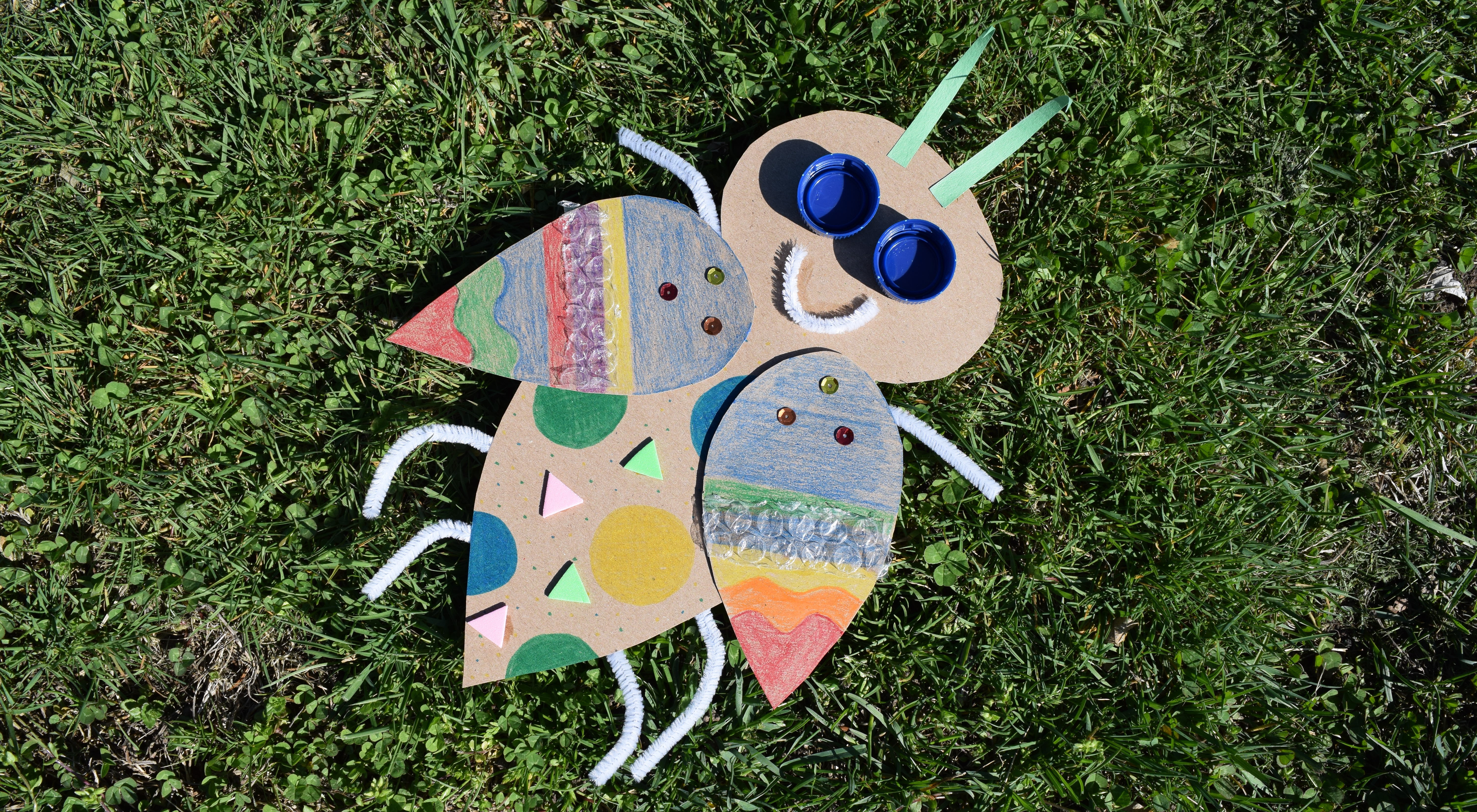 recycled materials bug project sitting on the grass