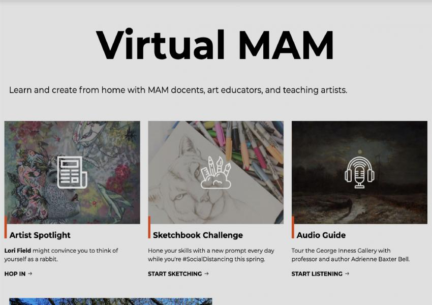 a screenshot of the virtual MAM page with a 10% black overlay on top