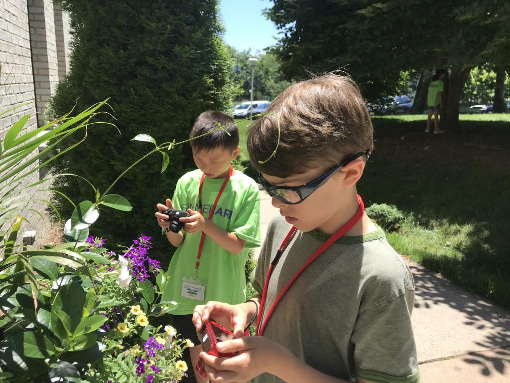 kids taking photos of flowers with digital cameras.