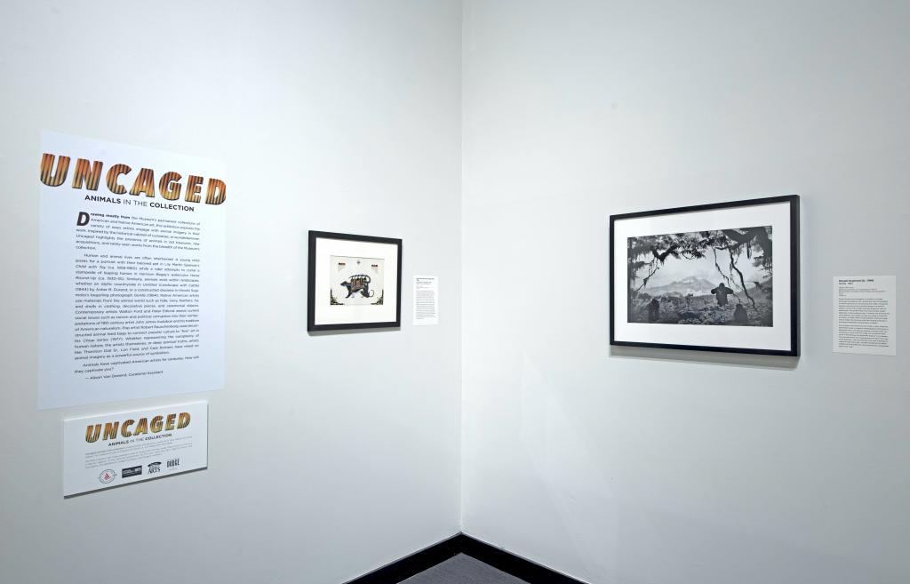 I'm an image! Gallery shot from exhibition Uncaged: Animals in the collection, which includes black and white photograph, titled Gorilla, by Hiroshi Sugimoto.